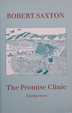 The Promise Clinic by Robert Saxton
